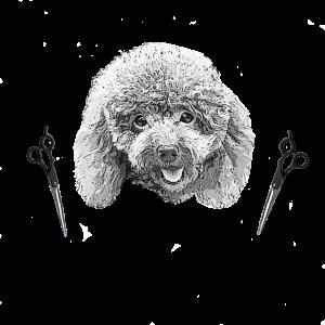 Elan S Toy Poodles Assemblage Non Requis